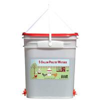RentACoop 5 Gallon Poultry Nipple Waterer