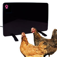 Cozy Safe Chicken Coop Heater
