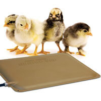 K&H Thermo-Peep Heated Pad