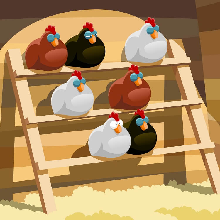 Chicken Roost Ideas