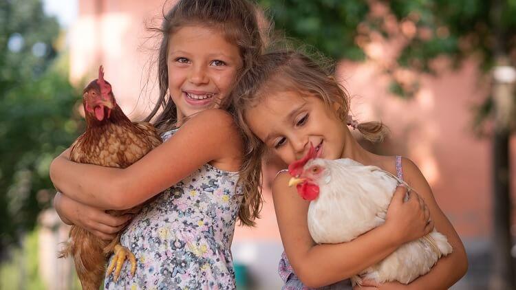Children Holding Chickens