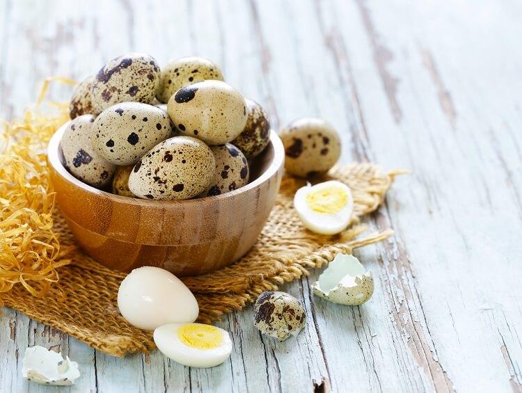 Clutch Of Quail Eggs