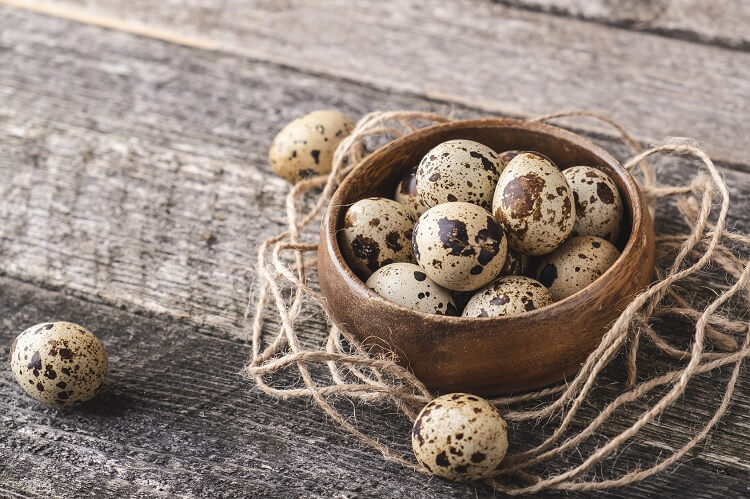 Collected Quail Eggs