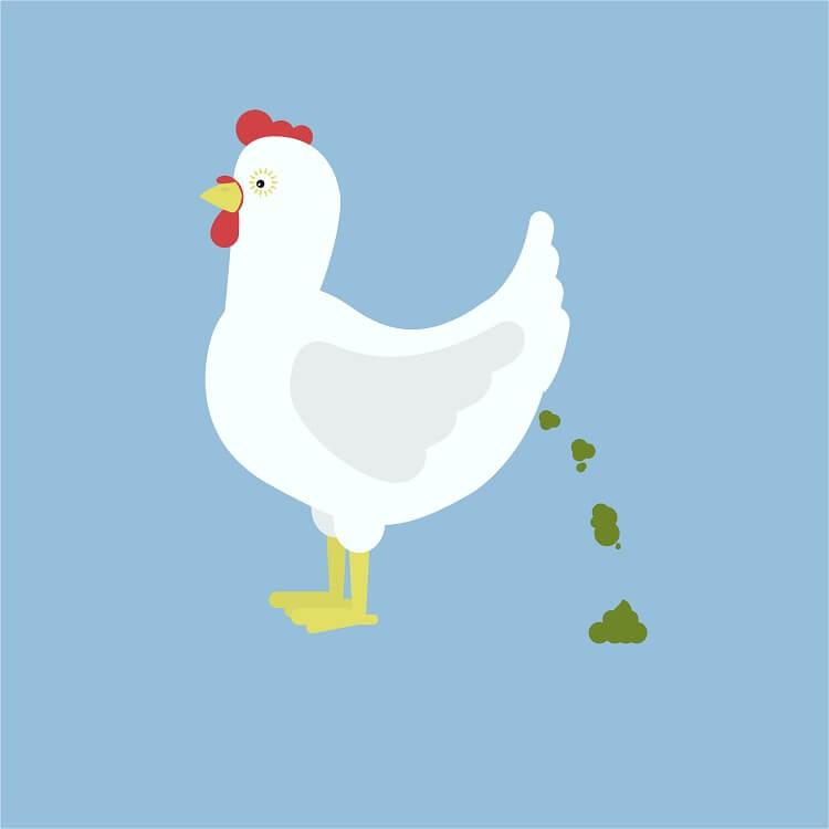 Green Chicken Poop