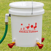 Chicken Culture Automatic Chicken Waterer Kit